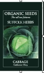 Organic Cabbage Seeds – Enkhuizen. Glory