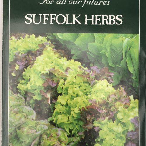 Organic Lettuce Seeds – Mixed