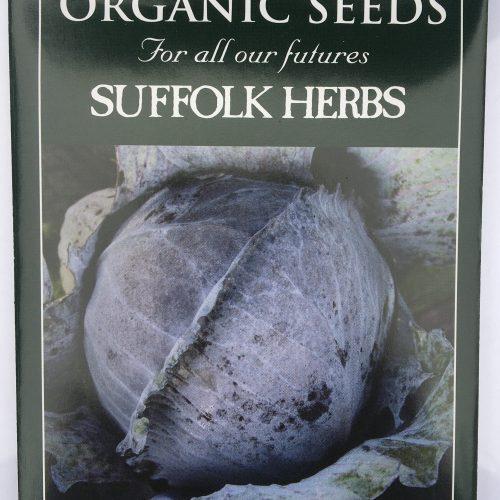 Organic Cabbage Seeds -Langedijker Bewaar 2