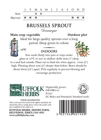 Organic Brussels Sprout Seeds – Groninger
