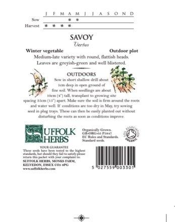 Organic Savoy cabbage – Vertus