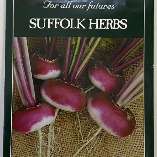 Organic Turnip Seeds – Milan Purple Top