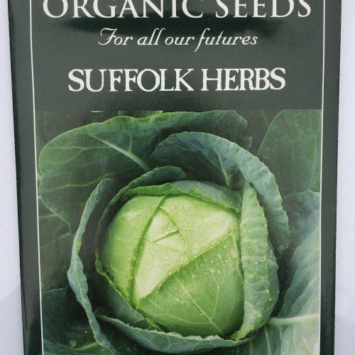 Organic Cabbage Seeds – Enkhuizen. Glory