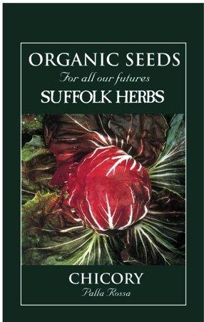 Organic Chicory Seeds – Palla Rosa