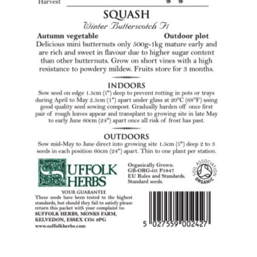 Organic Squash Seeds – Winter Butterscotch F1