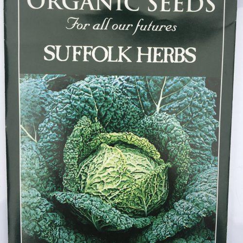 Organic Savoy cabbage – Versus