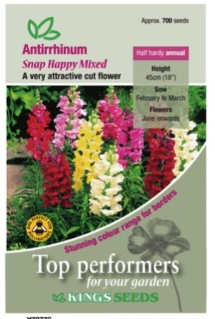 Antirrhinum Snap Happy Mixed Seeds