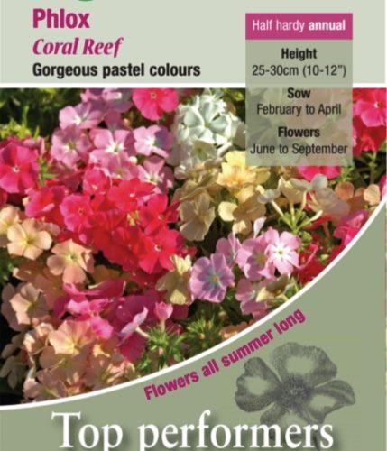 Phlox Coral Reef