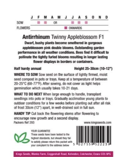 Antirrhinum Twinny Appleblossom F1