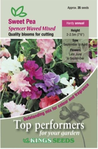 Sweet Pea – Spencer Waved Mixed