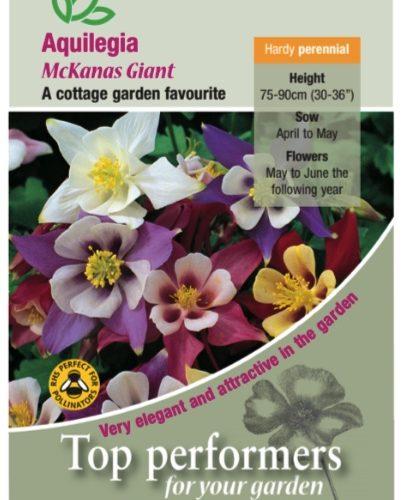 Aquilegia McKana's Giant Seeds