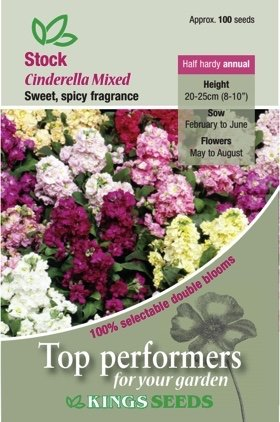 Stock – Cinderella Mixed