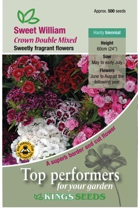 Sweet William Crown Double Mixed
