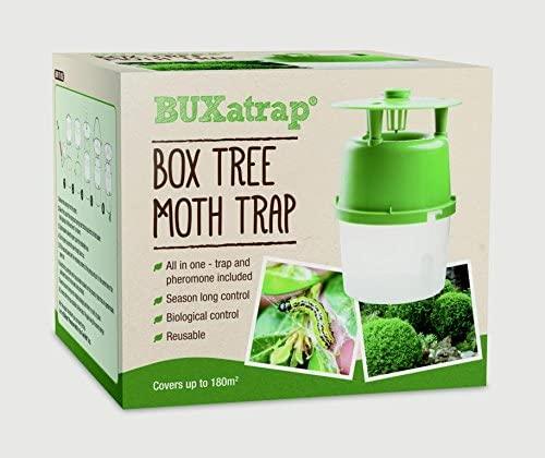 Box tree moth trap